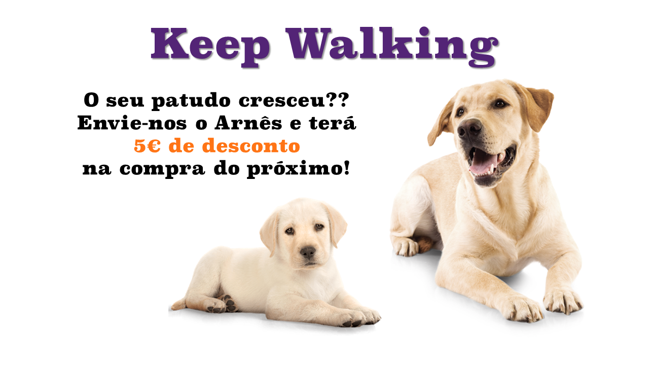 Reutilizar Walkies - Keep Walking